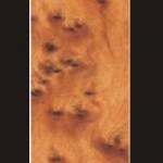 THUYA BURRA 150x150